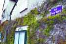 Giverny - Visitando Monet